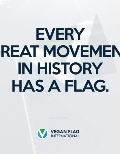 Every great movement in history has a flag