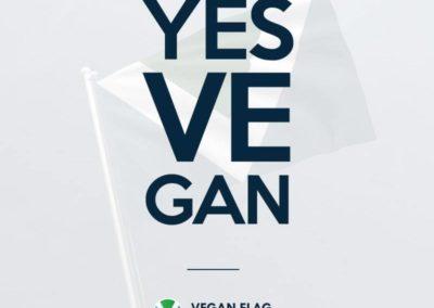YES VE GAN