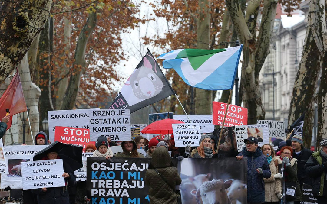 Hundreds of participants in a march for animals in Croatia
