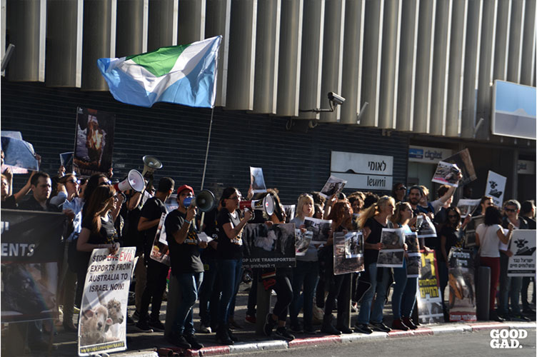 Protest against live shipment in israel